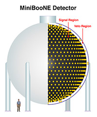 The MiniBooNE experiment uses 1,280 photomultiplier tubes to detect neutrinos interacting in a tank of mineral oil.
