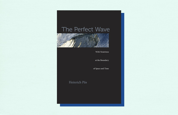 "Illustration of book cover ""The Perfect Wave"" by Heinrich Pas"