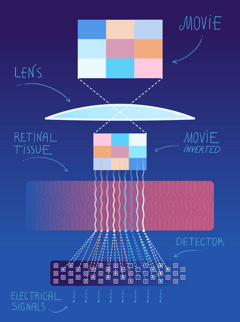 Illustration of Application: EyeDiagram