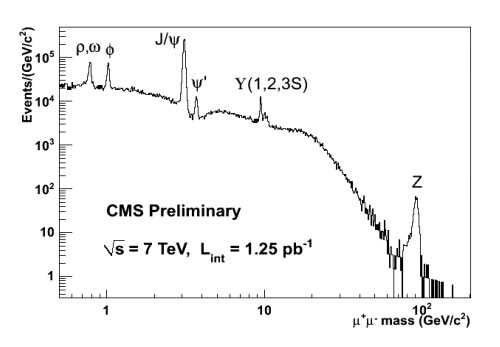 Image of CMS Preliminary Full 2