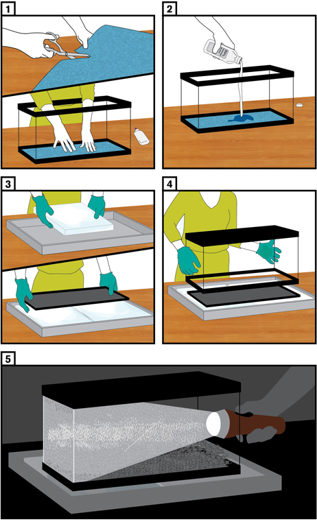 Illustration of Cloud Chamber Steps