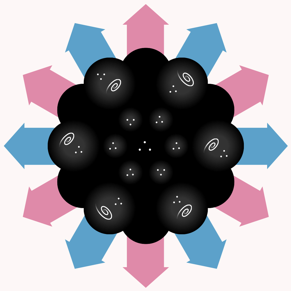 Flower shaped black shapes with cosmos inside and pink and blue arrows surrounding it