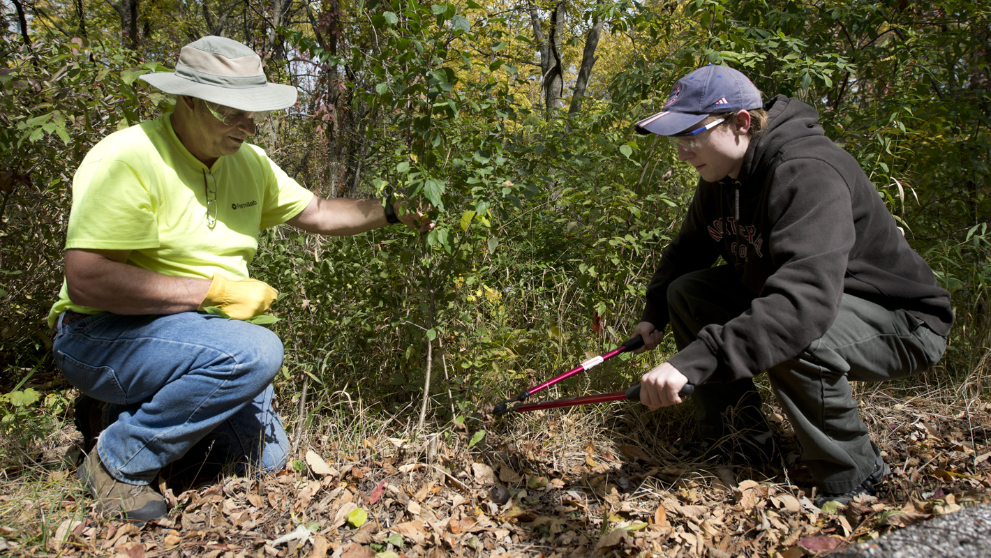 Image, S2B: Environment Stewardship, Header