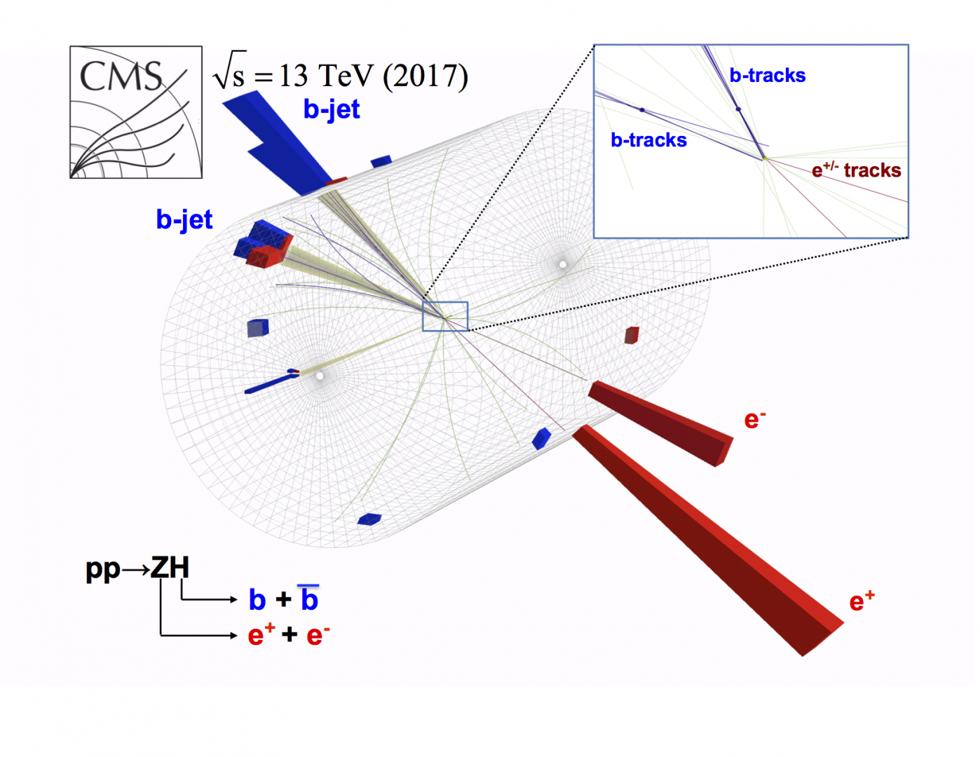 Image representing a particle collision in the CMS detector.