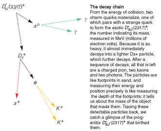 The Decay Chain
