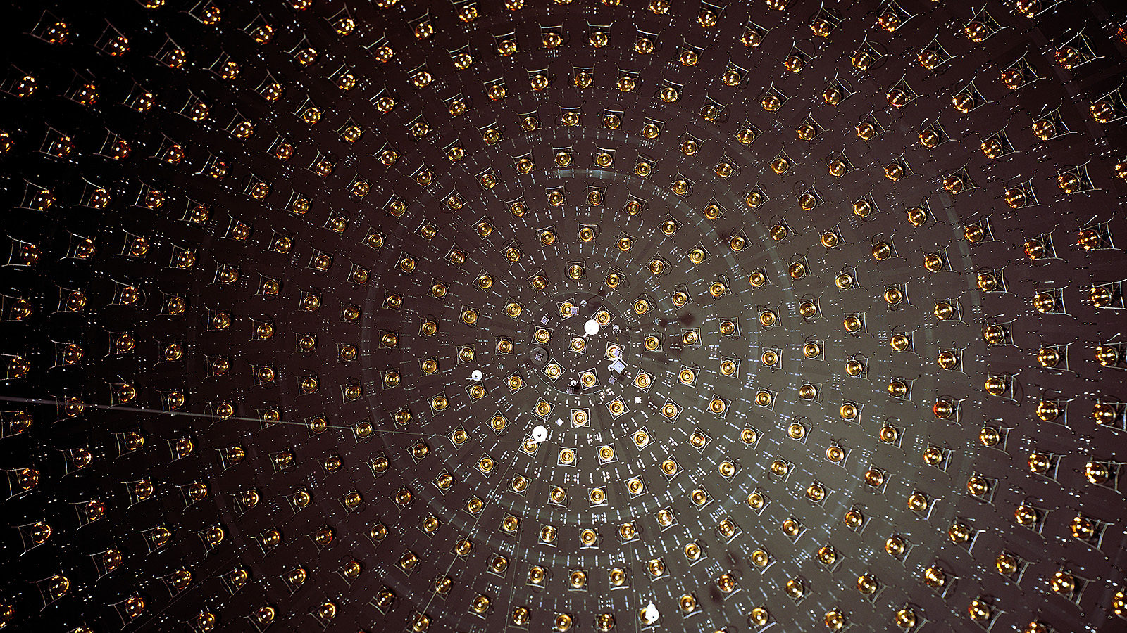 Photo of multipliers arranged in a spiral inside the MiniBooNE experiment