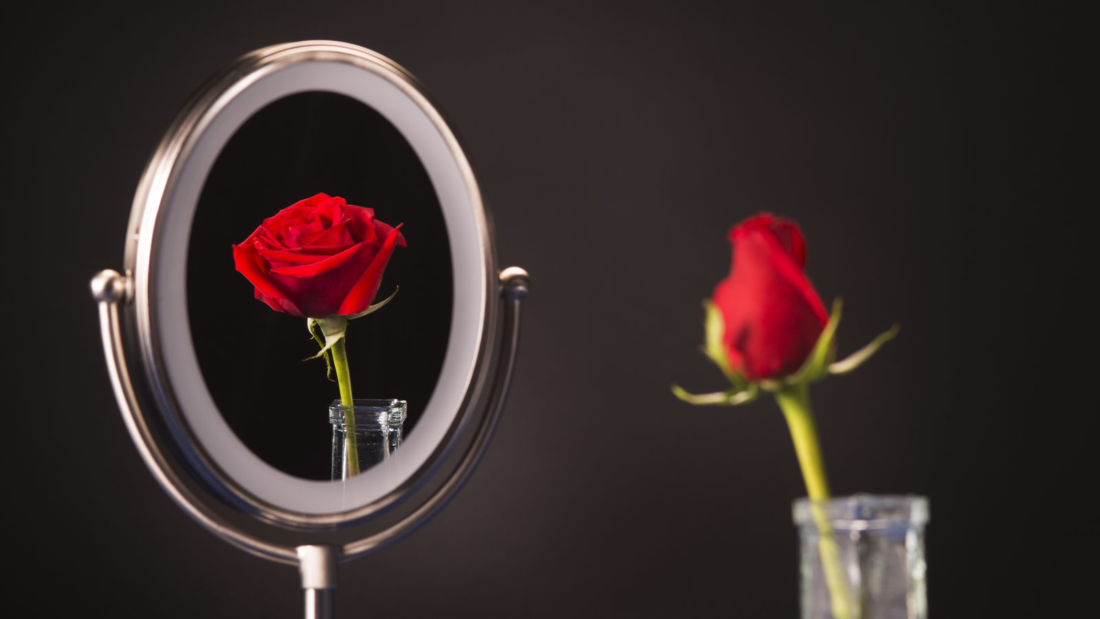 Photo of closed rose in mirror it is open
