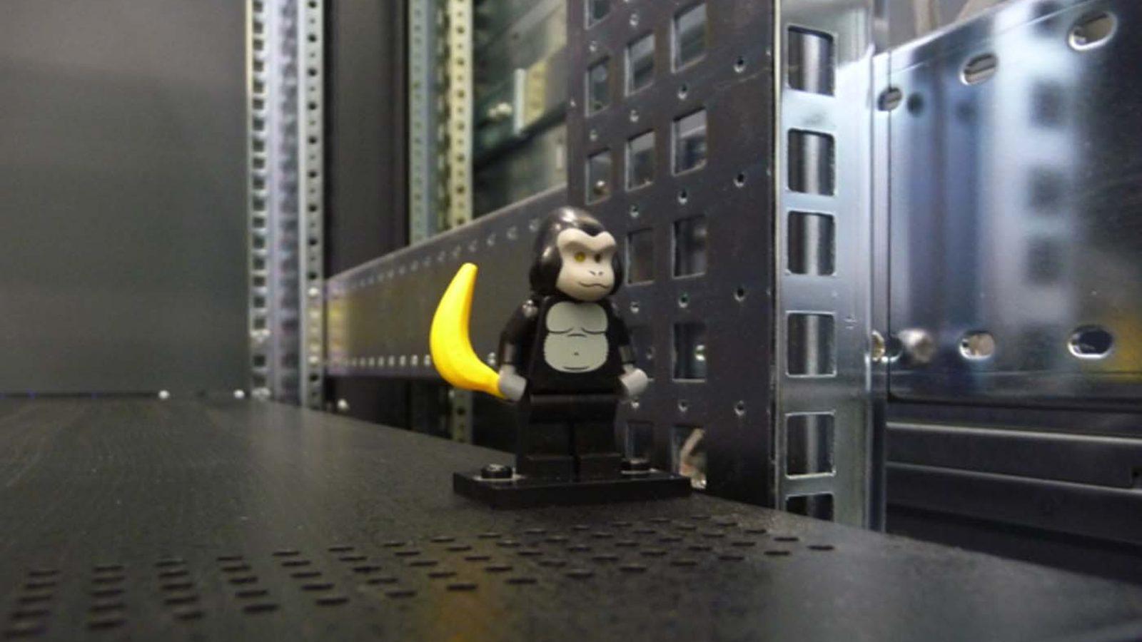 Photo of LEGO gorilla