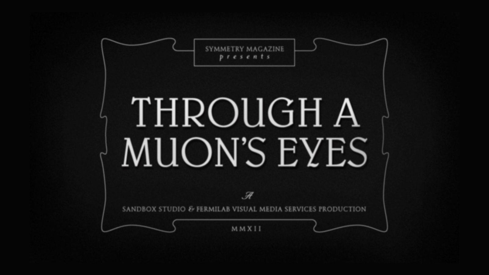 Through a Muon's Eyes