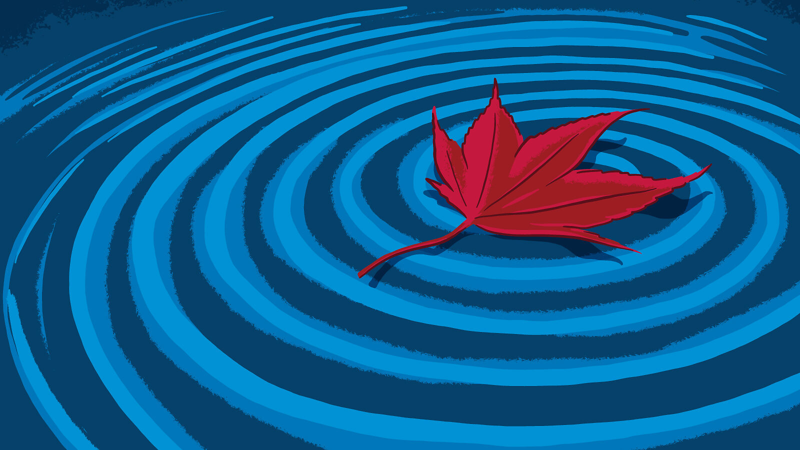 Illustration of a floating Japanese Maple leaf making waves in water