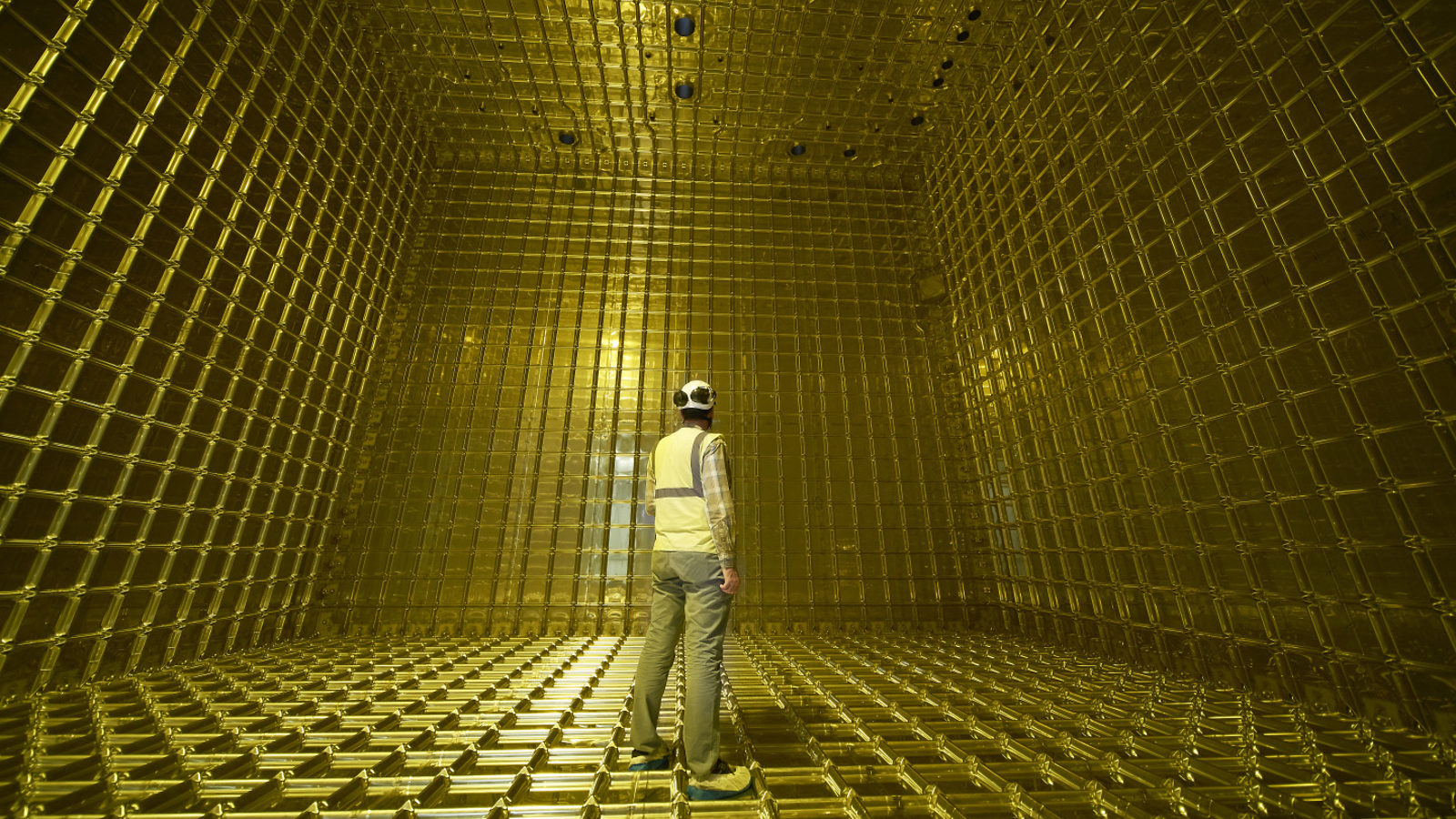 A researcher stands inside of the detector