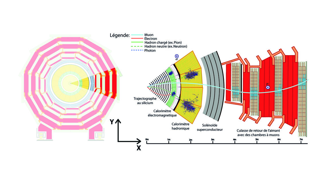 Diagram of the progress of a muon through the CMS detector