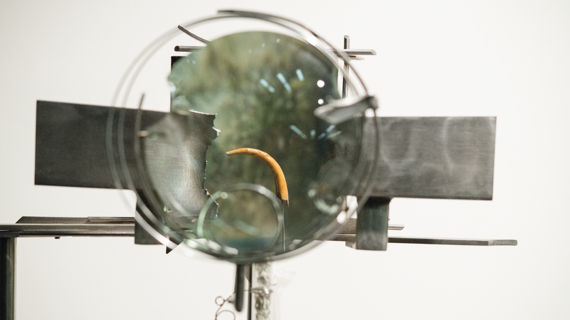 Photo of Jenkins' sculpture calledThe Failure of the Material, he uses a magnifying glass on an owl talon