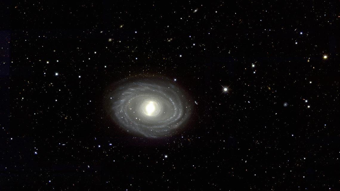 Art of darkness: NGC1398