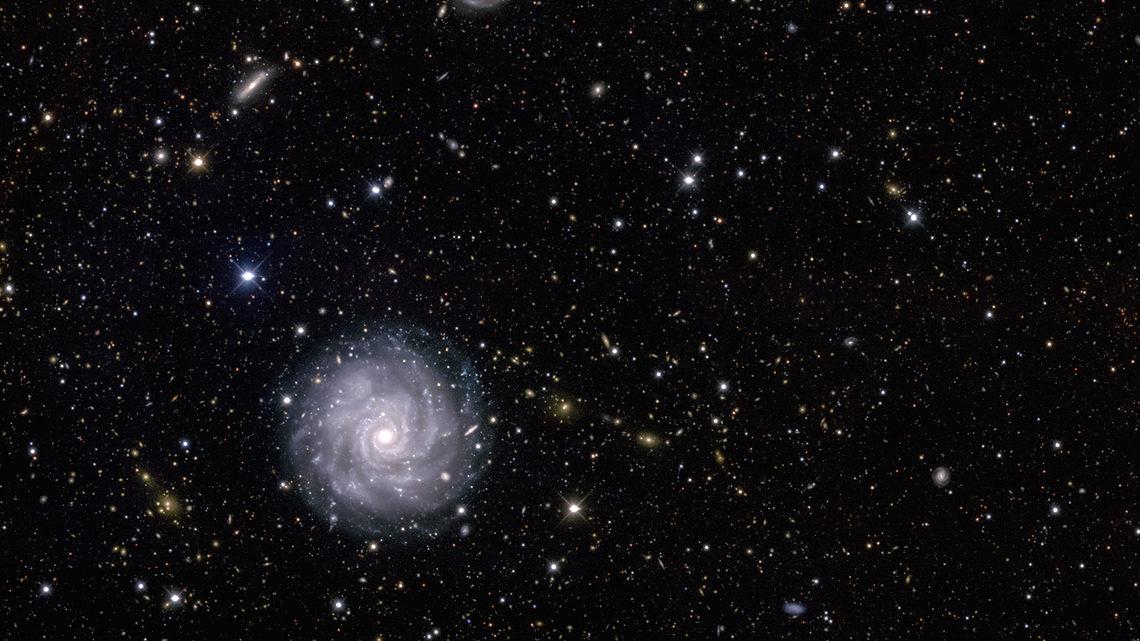 Art of darkness: NGC1703
