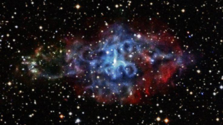 Neoron Stars
