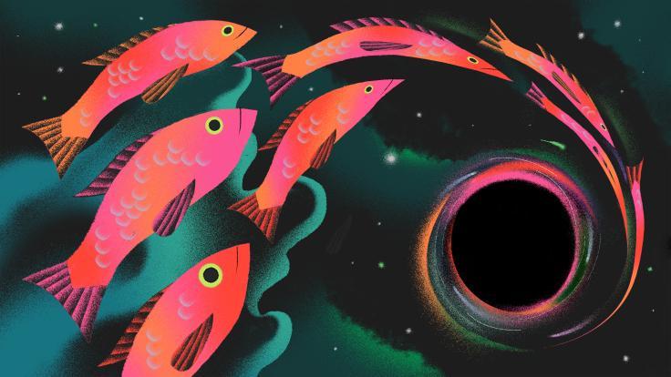 Fish falling into black hole