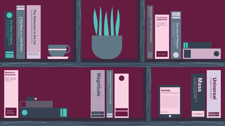 Illustration of book shelf with book spines from the 2017 book review