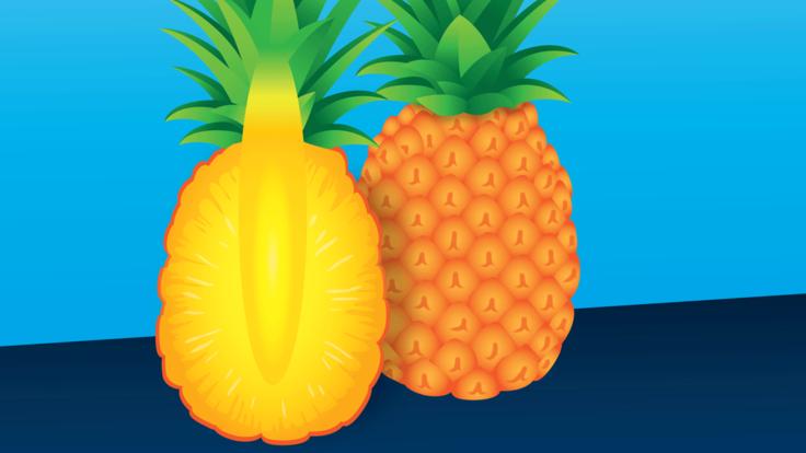 Illustration of pineapple (right) pineapple cut in half (left)