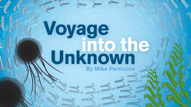 """Illustration of underwater jelly fish, muons, neutrinos, """"Voyage into the unknown"""""""