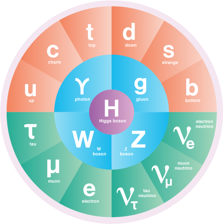 The Standard Model Of Particle Physics Symmetry Magazine